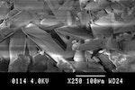 Ein elektron Mikroskop Bild von Salzkristallen
