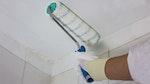 Auftragung der Dryzone Schimmelresistenten Emulsionsfarbe