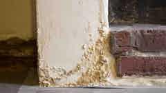 Gesättigter Putz wirft Blasen und fällt von der Wand ab
