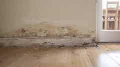 Sichtbare Salzverschmutzung verursacht die Verfärbung und das Abblättern der Tapeten
