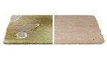 Verleich von Moos-, Flechten-, Algenwachstum auf unbehandelter Oberfläche und sauberer, mit Roxil behandelter Oberfläche