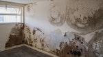 'Durch Mauerwerk eindringende Regennässe'